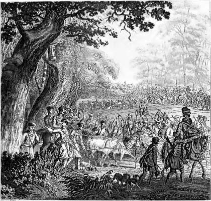 August III Sas, łowy, polowanie, 1757, Puszcza Białowieska, Białowieski Park Narodowy, Białowieża