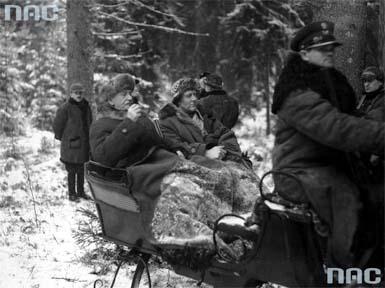 John Cudahy, Ignacy Mościcki, polowanie reprezentacyjne, łowy, Białowieża, Puszcza Białowieska, okres międzywojenny, dwudziestolecie międzywojenne