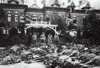 carskie polowanie, Puszcza Białowieska, Białowieża