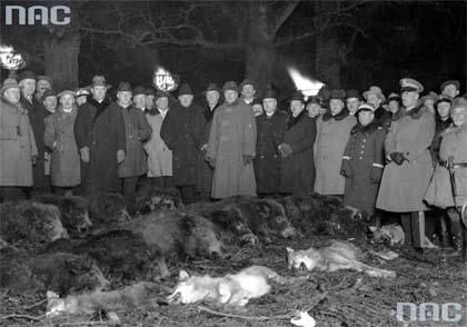 Ignacy Mościcki, polowanie reprezentacyjne, łowy, Białowieża, Puszcza Białowieska, okres międzywojenny, dwudziestolecie międzywojenne