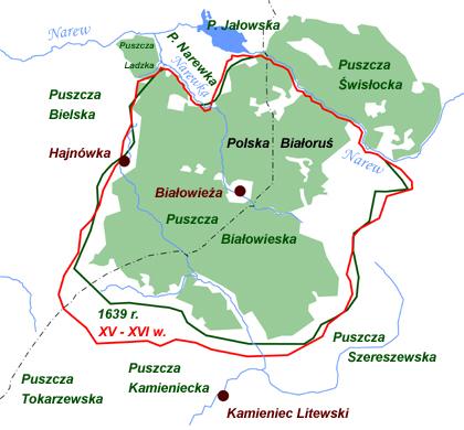 Puszcza Białowieska, Białowieski Park Narodowy, Białowieża, mapa, XVI i XVII wiek, Jagiellonowie